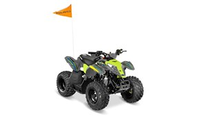 Polaris OUTLAW 50 AVALANCHE GREY/LIME SQUEEZE / 12$/sem 2018