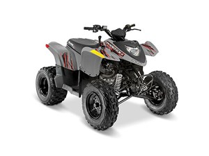 Polaris PHOENIX 200 AVALANCHE GRAY / 22$/sem 2017
