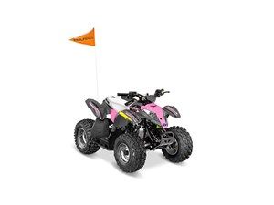Polaris Outlaw 50 Avalanche Grey / Pink Power 2018