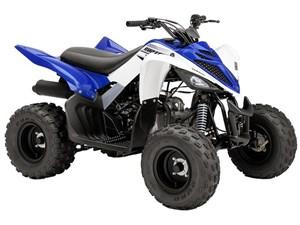 Yamaha Raptor 90 2016