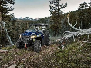 Polaris RZR 570 WHITE LIGHTNING / 32$/sem 2018