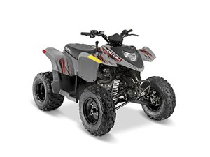 Polaris Phoenix® 200 Avalanche Gray 2017
