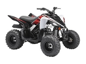 Yamaha Raptor 90 2019