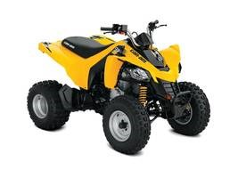 Can-Am DS 250® 2019
