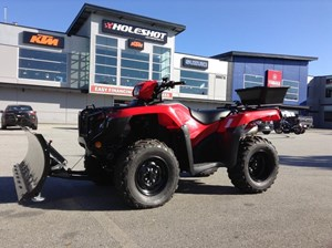 Honda TRX500 Foreman with snowplow, winch & sa 2019