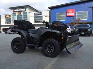 Honda TRX500 Rubicon DCT Deluxe with Snowplow, 2018
