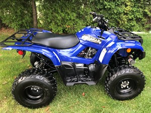 Yamaha Grizzly 300 2013