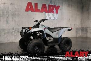 2021 Yamaha Grizzly 90