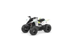 2022 Yamaha Raptor 50
