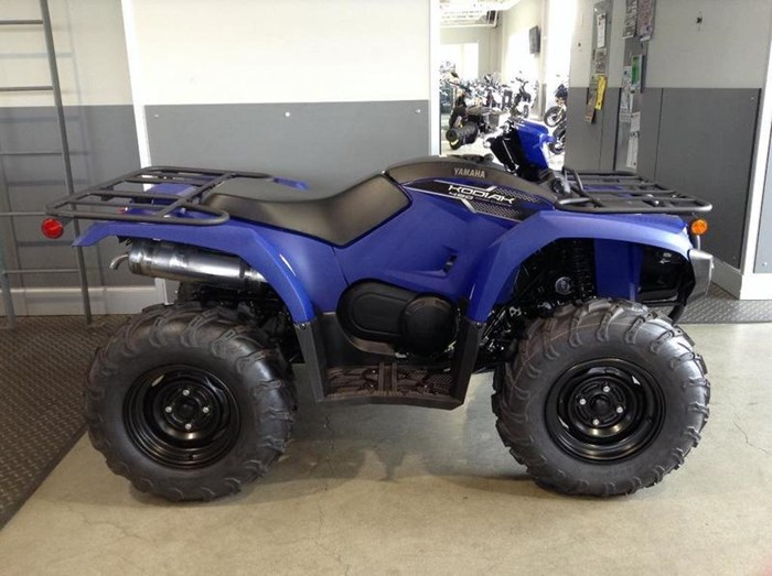 2019 Yamaha Kodiak 450 EPS Photo 3 of 4