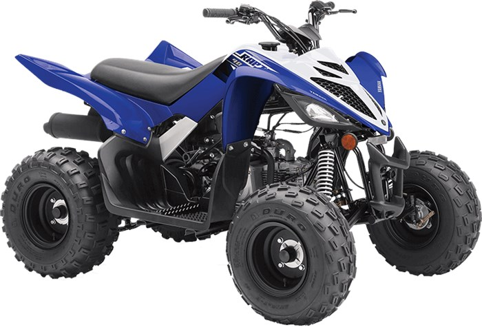 2019 Yamaha Raptor 90 Photo 2 of 4