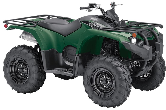2019 Yamaha Kodiak 450 Photo 2 of 6