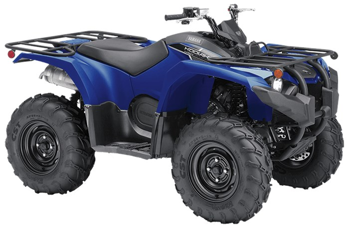 2019 Yamaha Kodiak 450 Photo 4 of 6