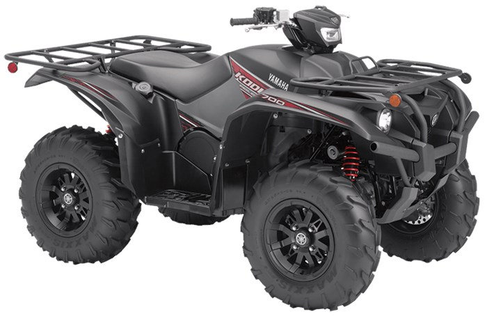 2019 Yamaha Kodiak 700 EPS SE Photo 2 of 4