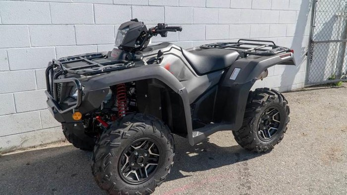 2019 Honda TRX500 Rubicon DCT DELUXE Photo 4 of 4