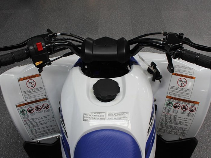 2018 Yamaha YFZ50 Photo 6 of 7