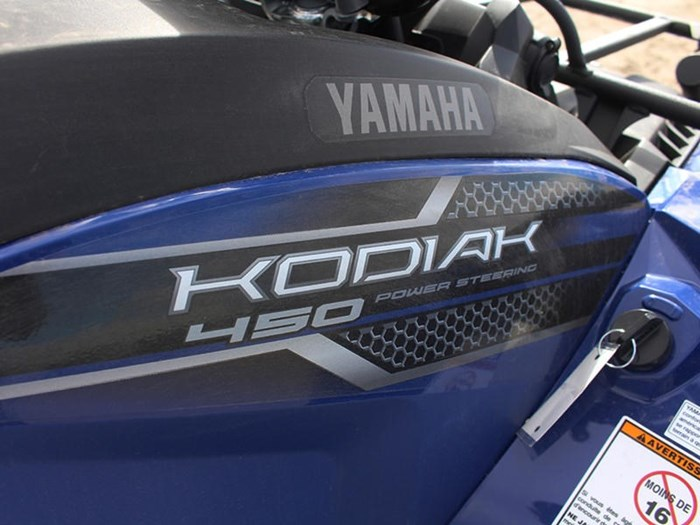2019 Yamaha Kodiak 450 EPS Photo 10 of 10