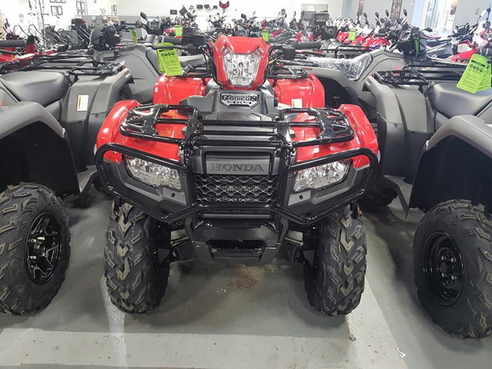 2019 Honda TRX500 Rubicon IRS EPS Photo 1 of 5