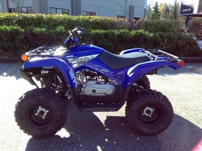 2019 Yamaha Grizzly 90 Photo 6 of 6