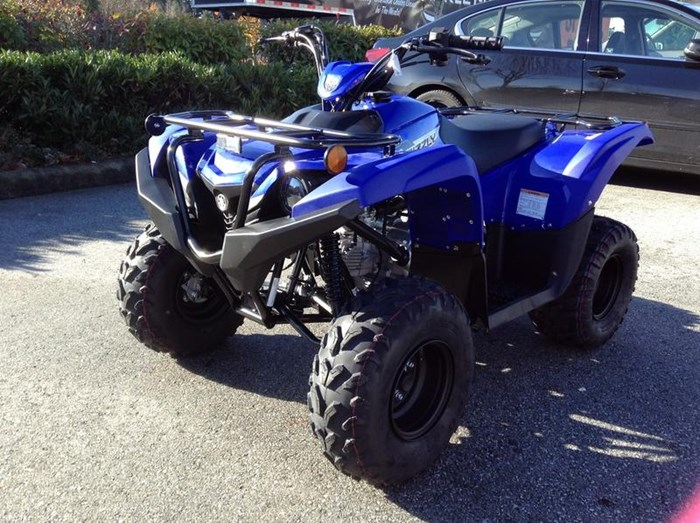 2019 Yamaha Grizzly 90 Photo 2 of 6