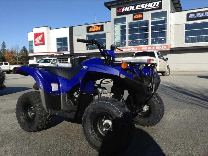 2019 Yamaha Grizzly 90 Photo 3 of 6