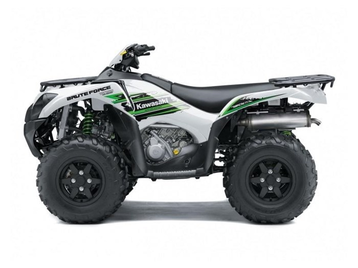 2018 Kawasaki Brute Force® 750 4x4i EPS SE Photo 3 of 3