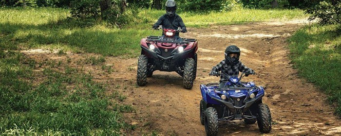 2019 Yamaha Grizzly 90 Photo 4 sur 9