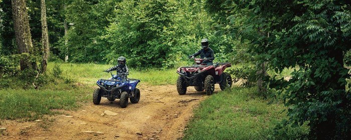 2019 Yamaha Grizzly 90 Photo 5 sur 9