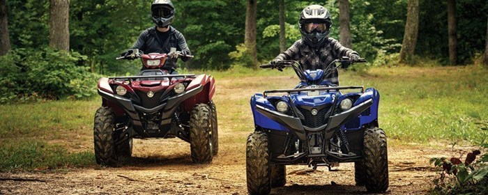 2019 Yamaha Grizzly 90 Photo 6 sur 9