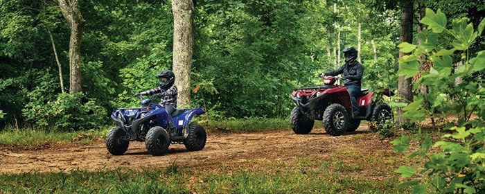 2019 Yamaha Grizzly 90 Photo 7 sur 9