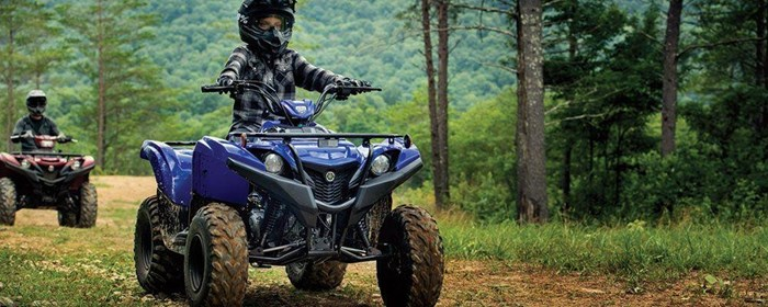 2019 Yamaha Grizzly 90 Photo 8 sur 9