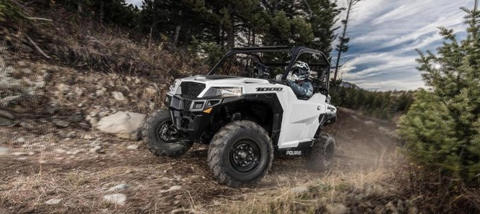 2019 Polaris GENERAL 1000 EPS WHITE Photo 2 of 3