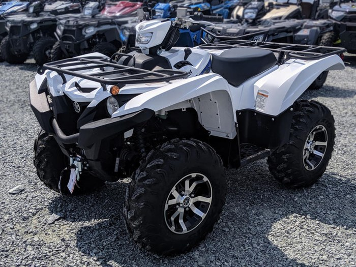 2019 Yamaha Grizzly EPS Photo 1 of 11