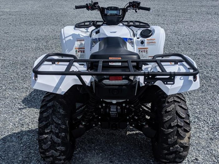 2019 Yamaha Grizzly EPS Photo 5 of 11