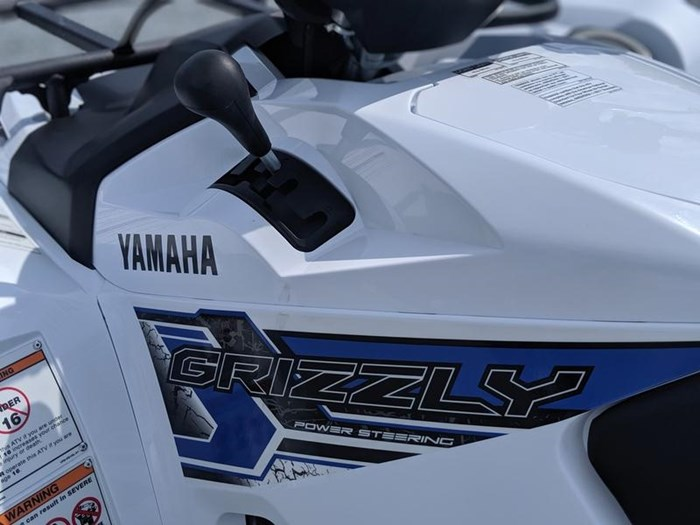 2019 Yamaha Grizzly EPS Photo 9 of 11