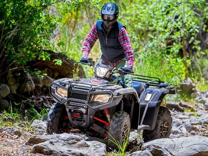 2019 Honda TRX500 Rubicon DCT Deluxe Close Range Ca Photo 2 of 2