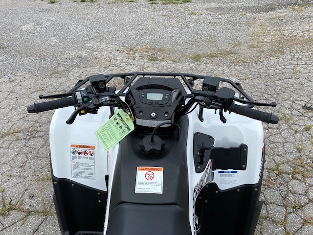 2021 Kawasaki Brute Force 300 Photo 12 of 12