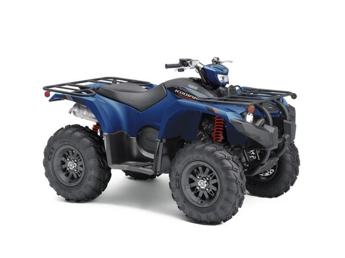 2019 Yamaha Kodiak 450 EPS SE Photo 1 of 1