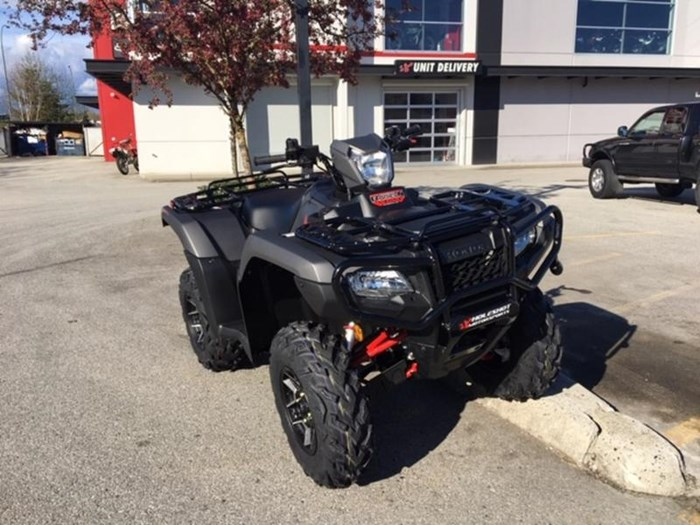 2019 Honda TRX500 Rubicon DCT DELUXE Photo 1 of 5