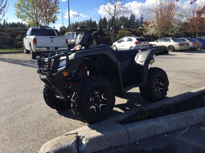 2019 Honda TRX500 Rubicon DCT DELUXE Photo 5 of 5