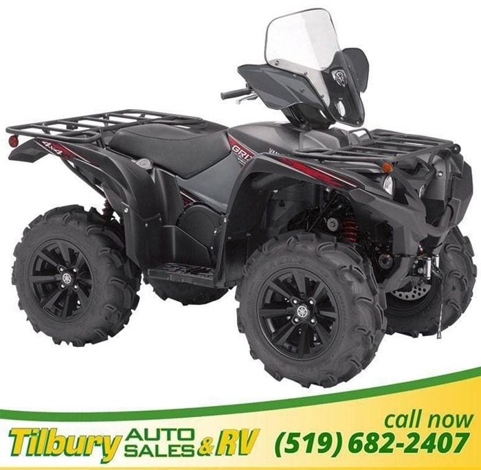 2019 Yamaha Grizzly Photo 1 of 7