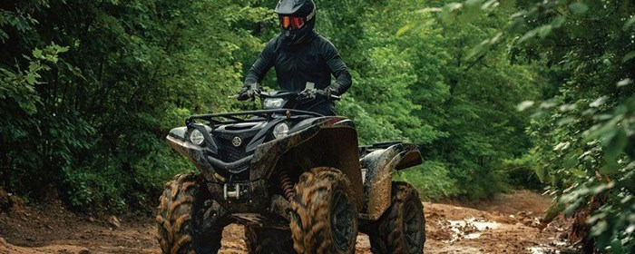 2019 Yamaha Grizzly Photo 3 of 7
