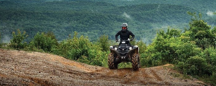 2019 Yamaha Grizzly Photo 5 of 7