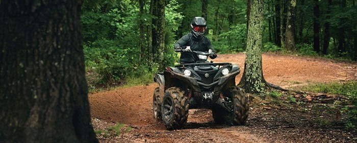 2019 Yamaha Grizzly Photo 6 of 7