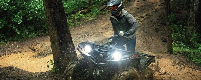 2019 Yamaha Grizzly Photo 7 of 7