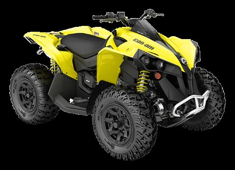 2019 Can-Am Renegade 570 Photo 1 of 1