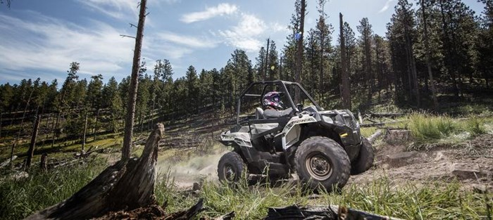 2019 Polaris ACE 570 EPS GRAY Photo 3 of 5