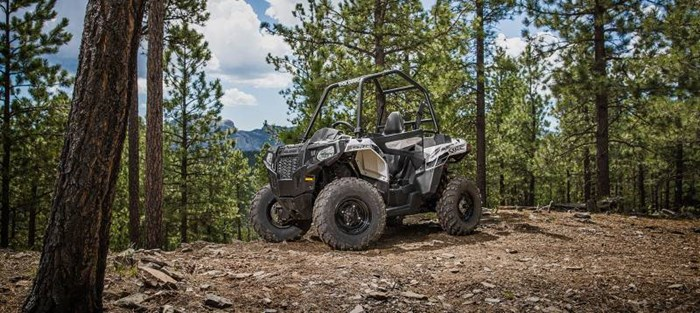 2019 Polaris ACE 570 EPS GRAY Photo 4 of 5