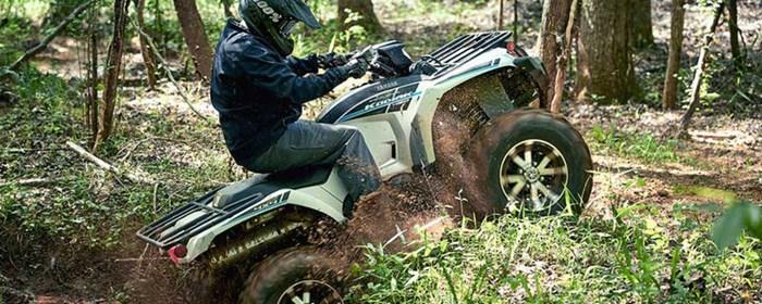2020 Yamaha Kodiak 450 EPS SE Photo 2 of 2