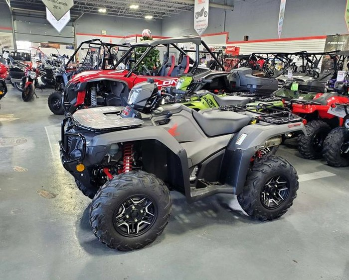 2019 Honda TRX500 Rubicon DCT DELUXE Photo 1 of 7
